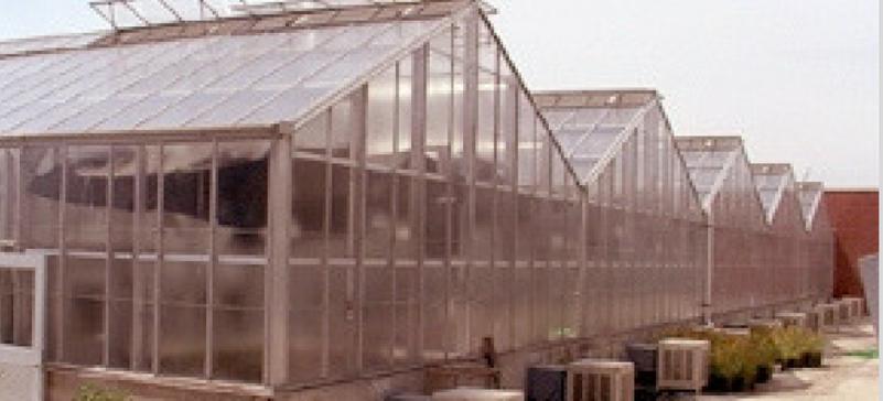 Biological Sciences Greenhouse