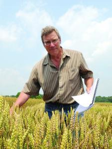 Dr. Clay Sneller in a wheat field